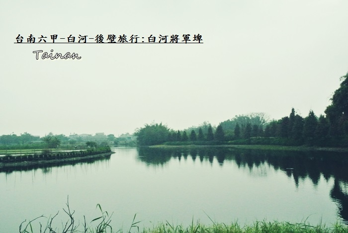 台南白河將軍埤1.JPG