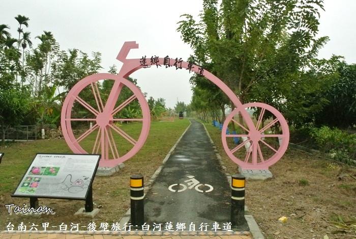 台南白河蓮鄉自行車道4.JPG
