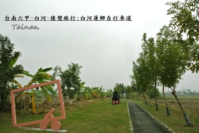 台南白河蓮鄉自行車道5.JPG