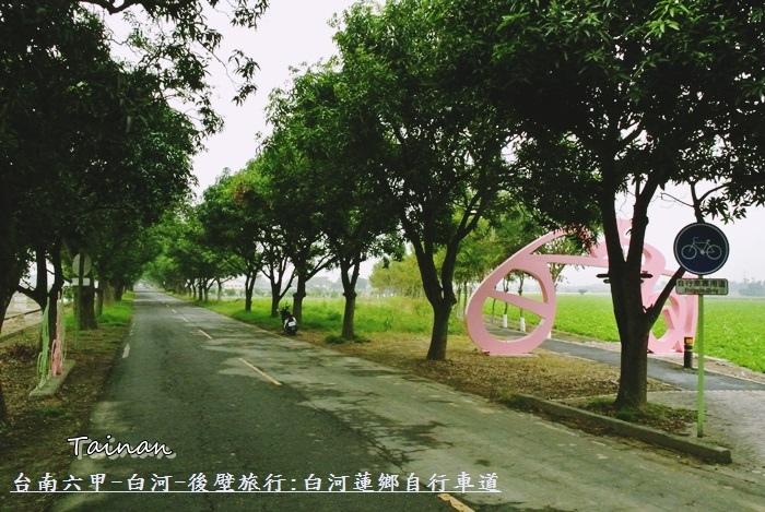 台南白河蓮鄉自行車道1.JPG