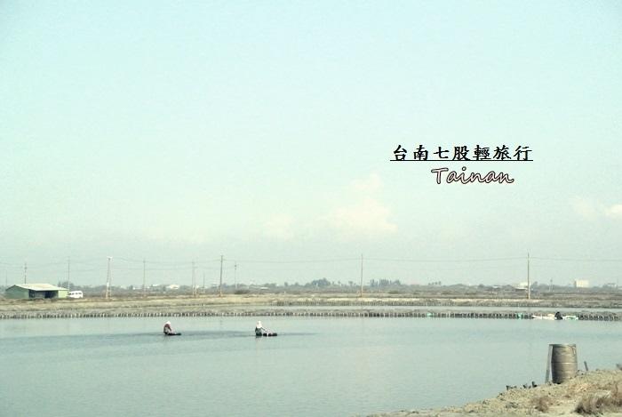台南七股輕旅行13