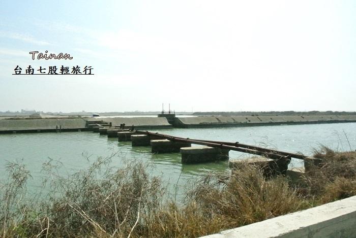 台南七股輕旅行23