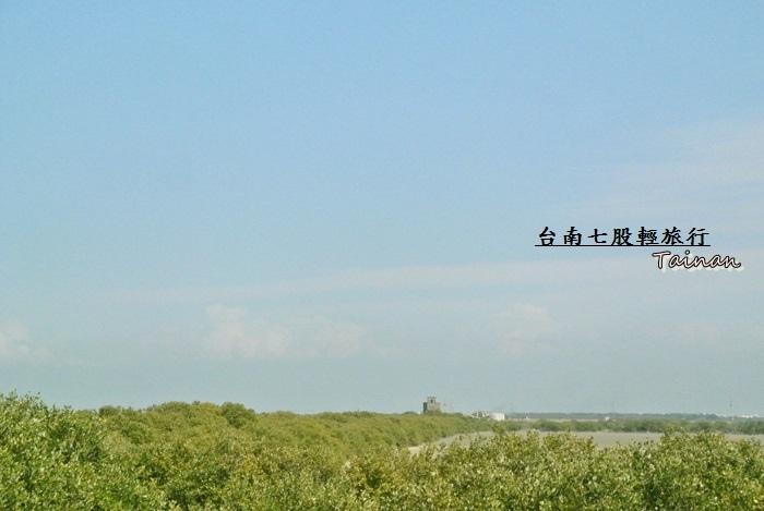 台南七股輕旅行25