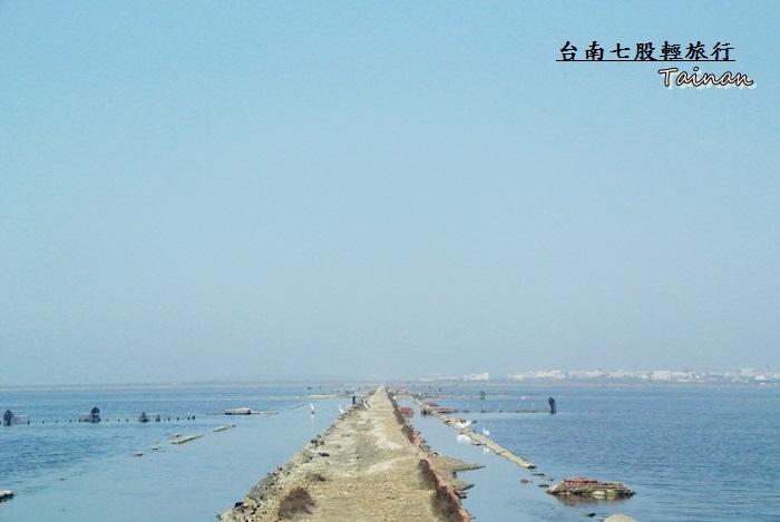 台南七股輕旅行21.JPG
