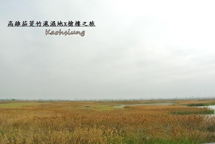 高雄茄萣竹滬濕地10