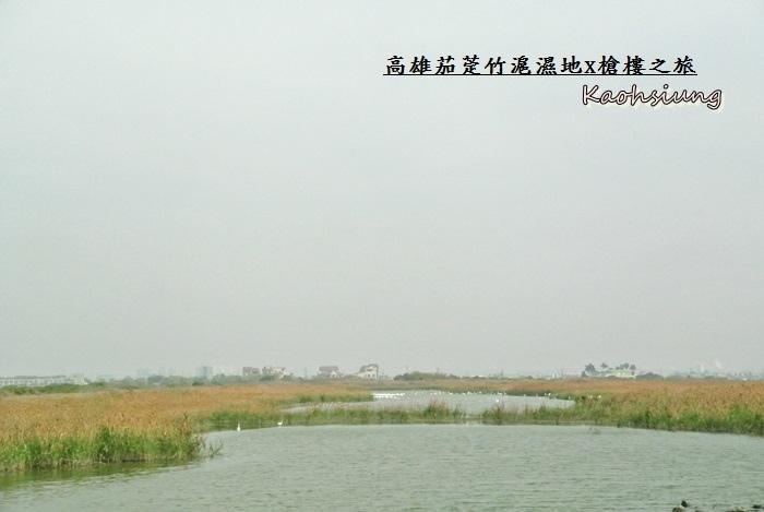 高雄茄萣竹滬濕地19