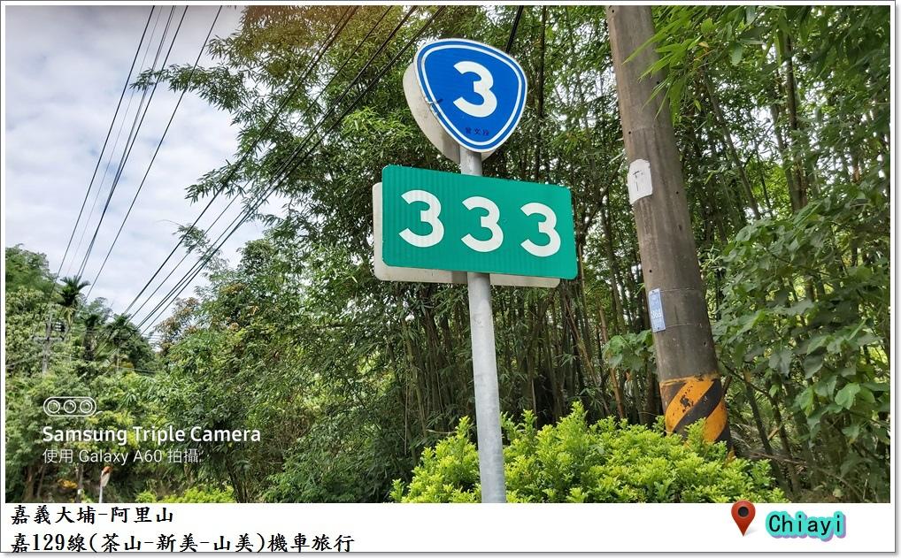 嘉義大埔阿里山南三村之旅52.jpg