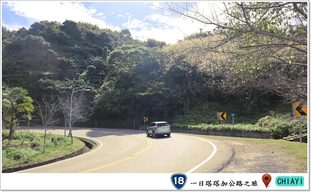 一日塔塔加公路之旅3.JPG