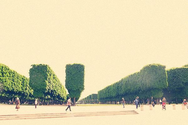 Jardin du Luxembour壯觀的樹