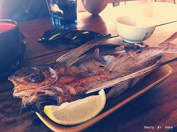 迦南園 烤飛魚