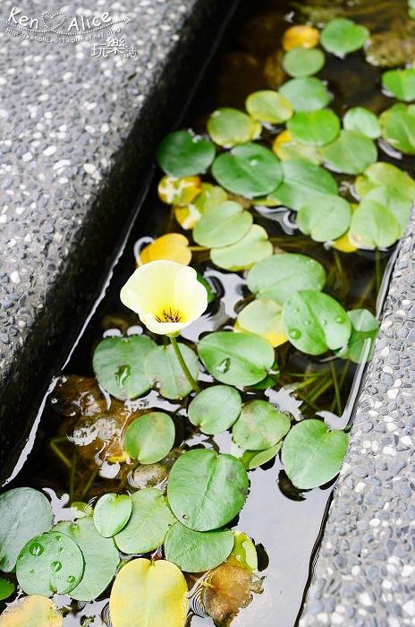 105.05宜蘭民宿_畫水River04.jpg