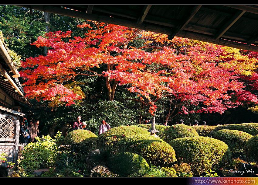 kyo-shis05.jpg