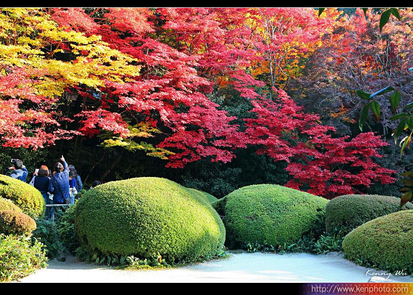 kyo-shis10.jpg
