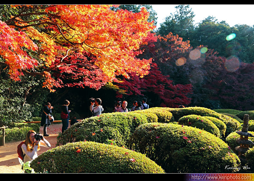 kyo-shis16.jpg