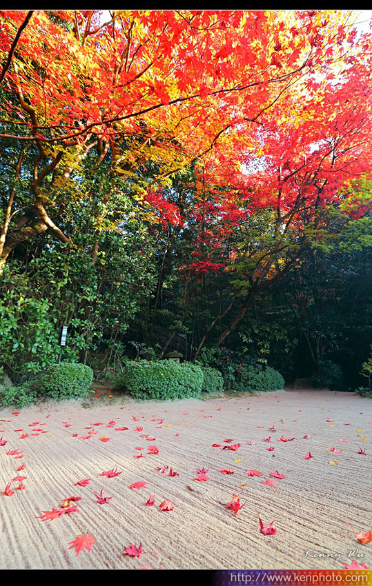 kyo-shis17.jpg
