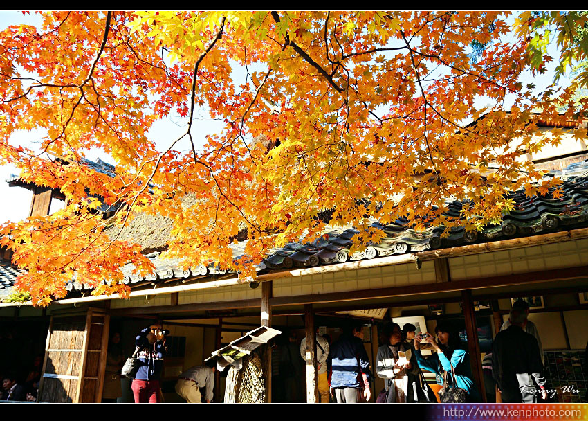 kyo-shis20.jpg