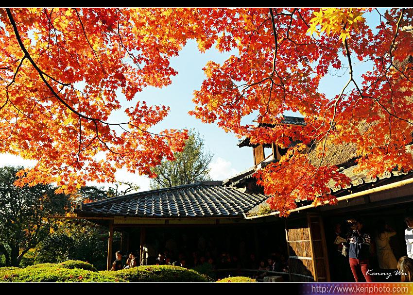 kyo-shis21.jpg