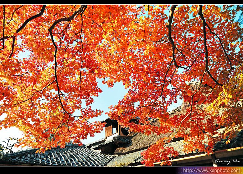 kyo-shis22.jpg