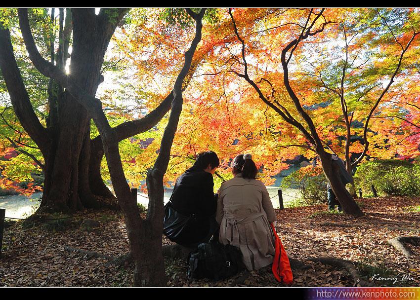 kyo-plant05.jpg