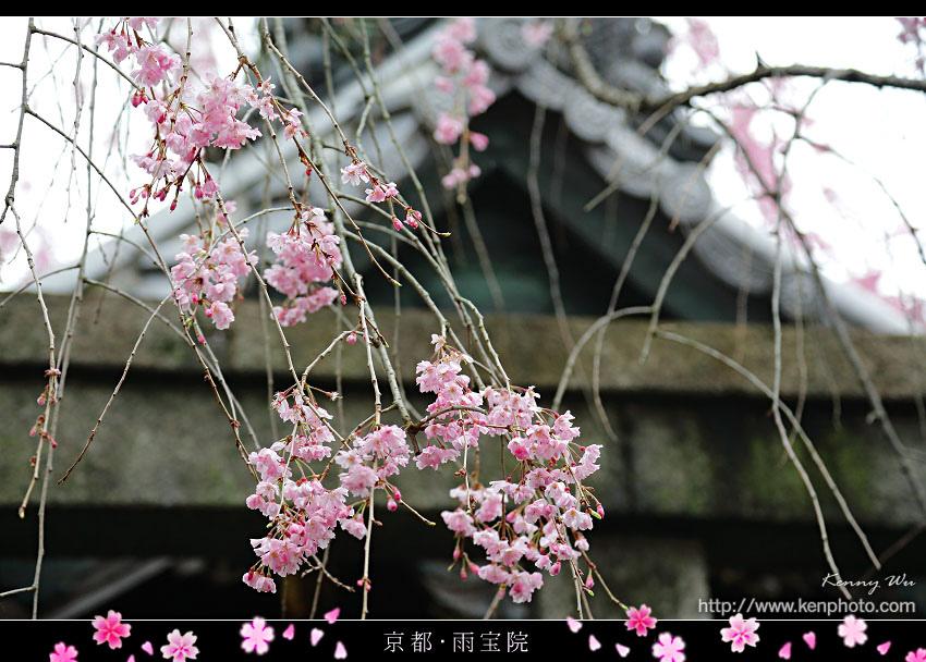 2015-ky-ub08.jpg