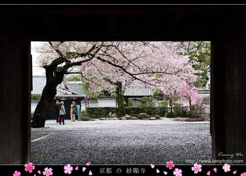 kyo-shik25.jpg