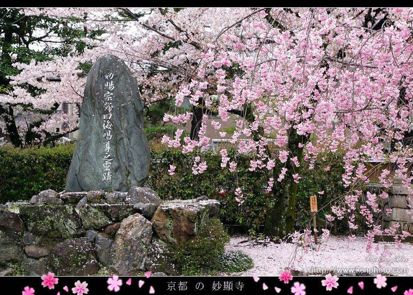 kyo-shik32.jpg