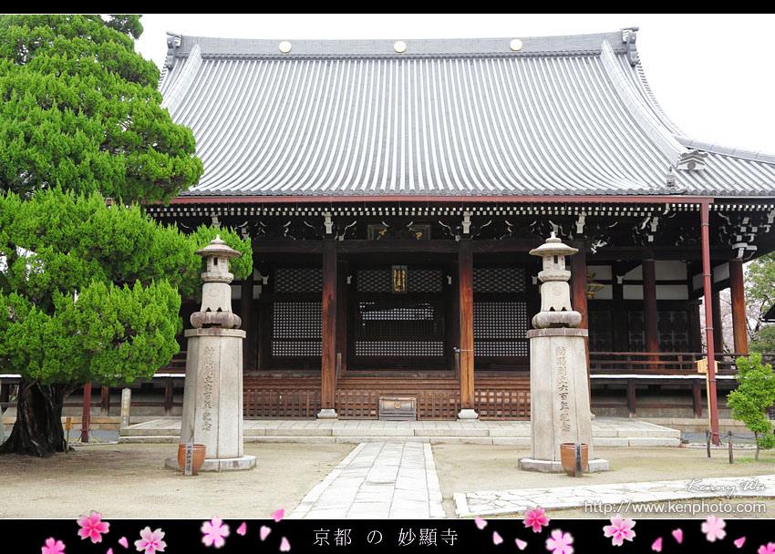 kyo-shik35.jpg