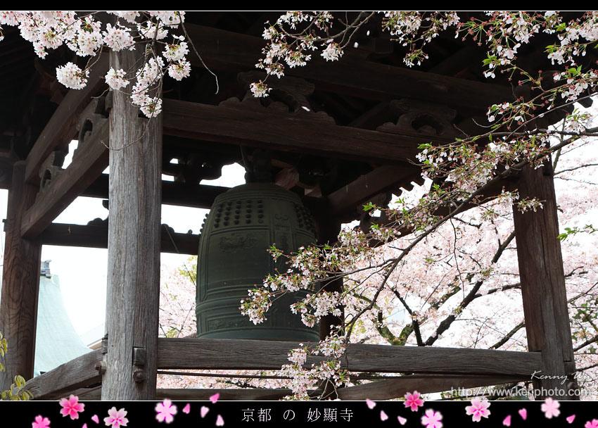 kyo-shik09.jpg