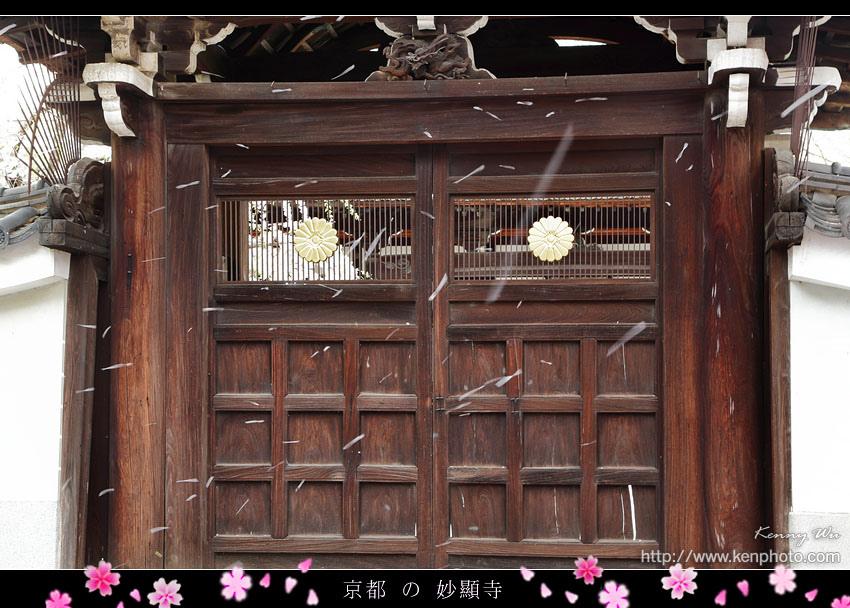 kyo-shik22.jpg