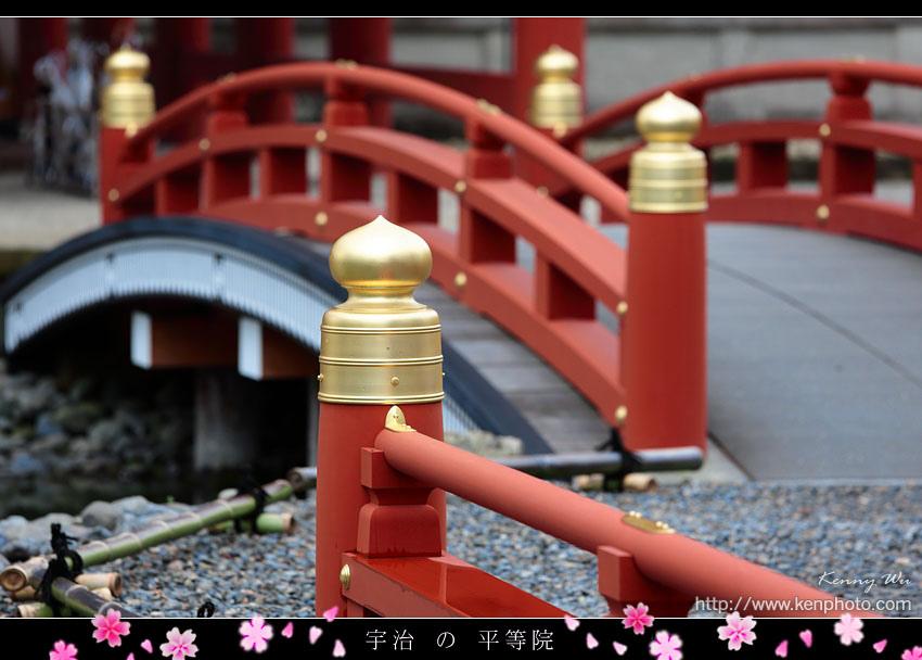 kyo-uji11.jpg