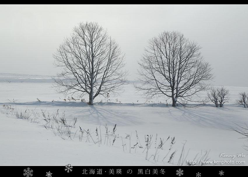 biei-so37.jpg