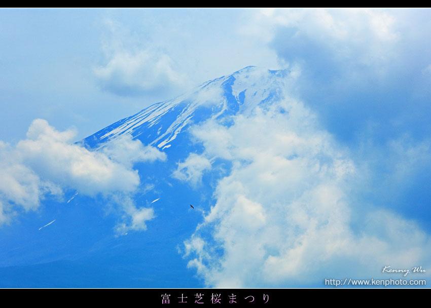 shibazak05.jpg