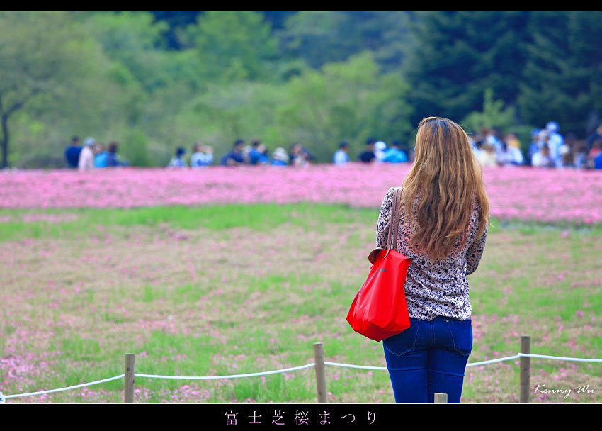 shibazak19.jpg