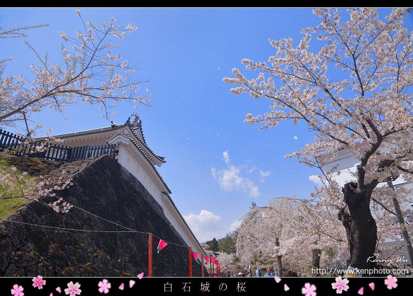 shiro04.jpg