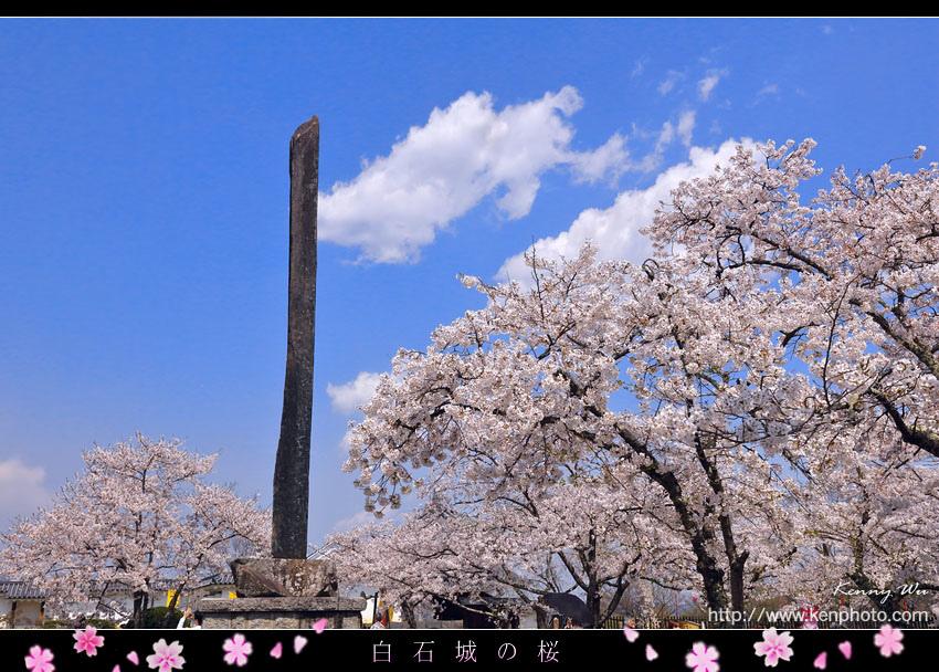 shiro32.jpg