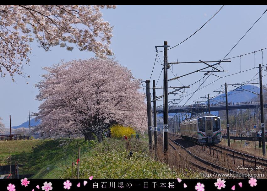 miyask46.jpg
