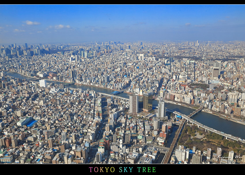 skytree19.jpg