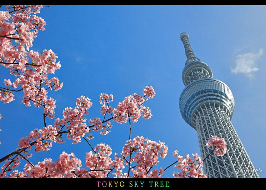 skytree34.jpg