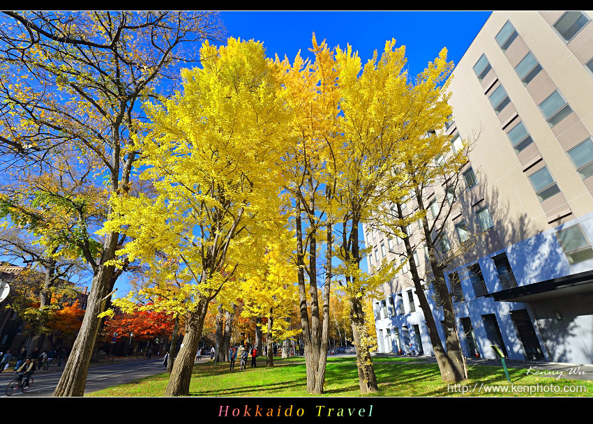 hok-uni46.jpg