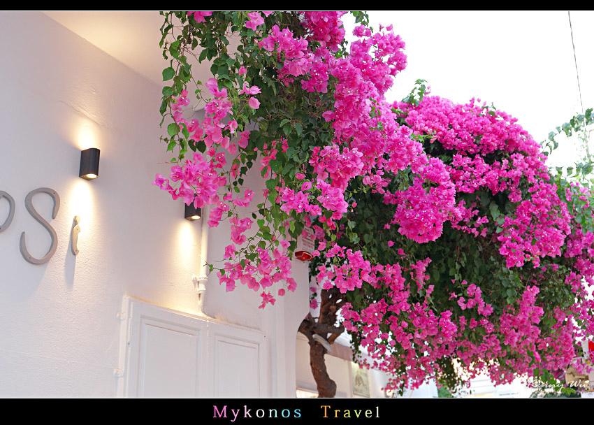 mykho1-44.jpg