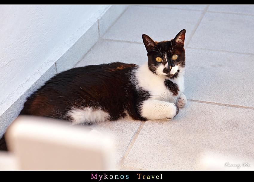 mykho1-61.jpg