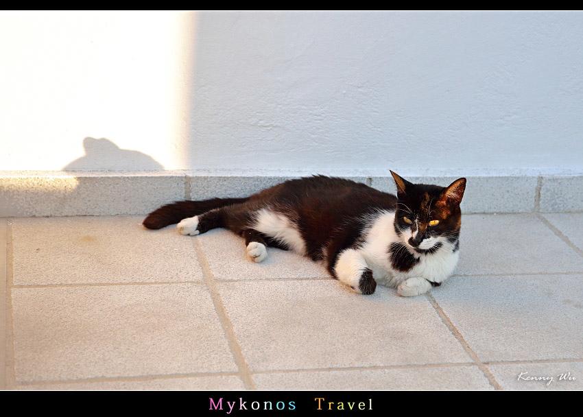 mykho1-60.jpg