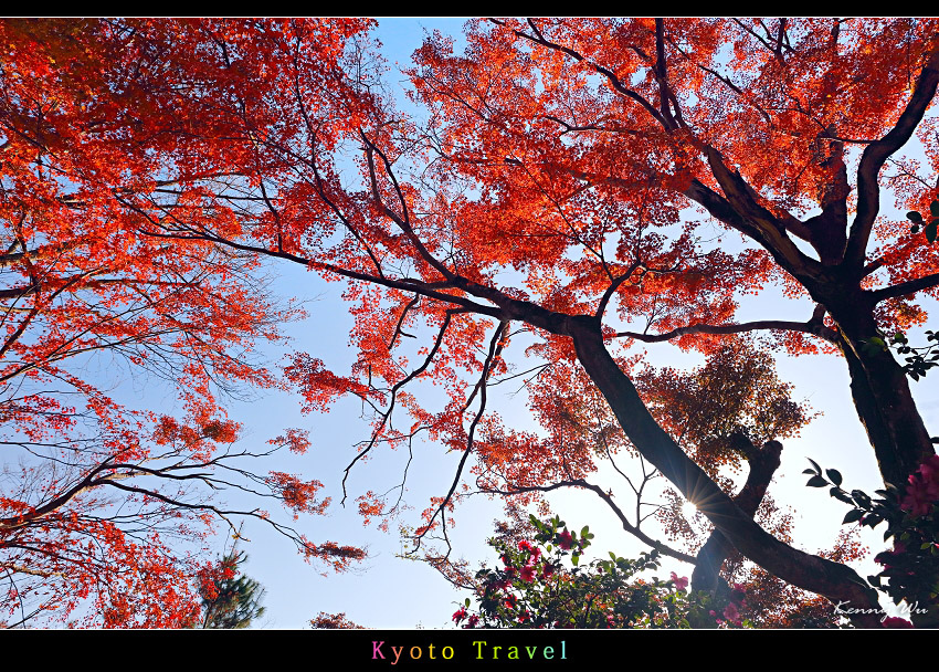 tenryuji46.jpg