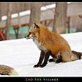 fox-vil06.jpg