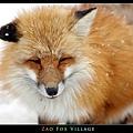 fox-vil08.jpg