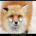 fox-vil45.jpg