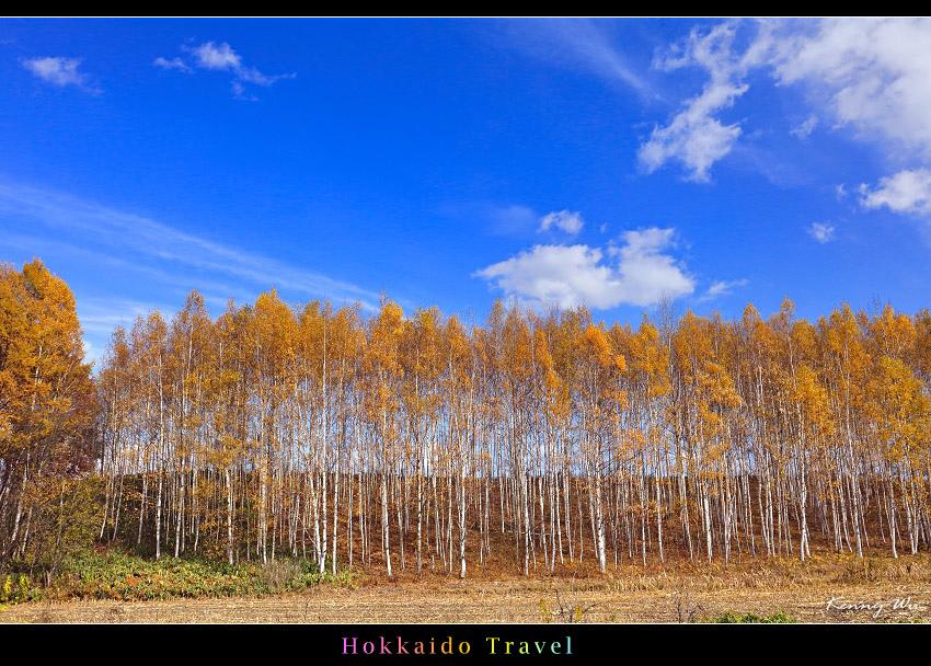 hok-fl05.jpg