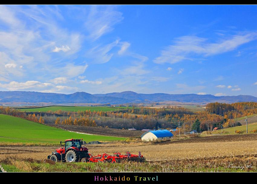 hok-fl17.jpg