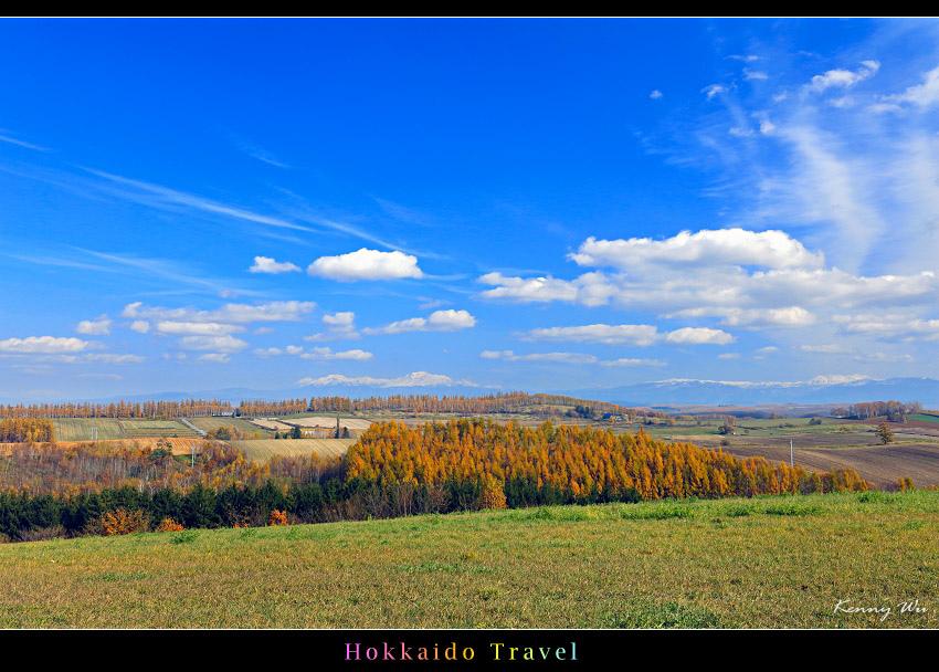 hok-fl14.jpg