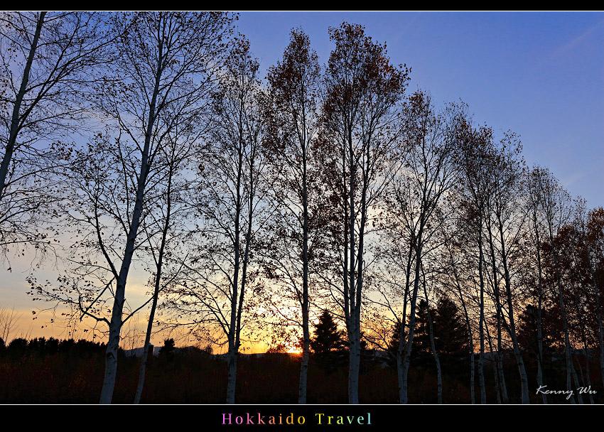 hok-fl25.jpg